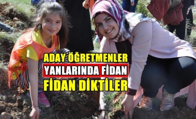 Kahramanmaraş'ta aday öğretmenler, fidan dikti