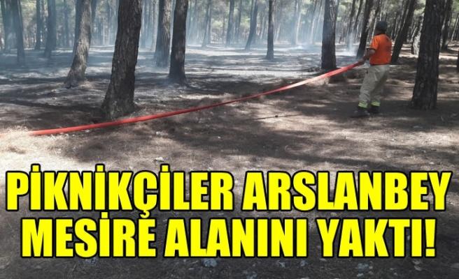 Kahramanmaraş'ta piknikçiler Arslanbey Parkını yaktı