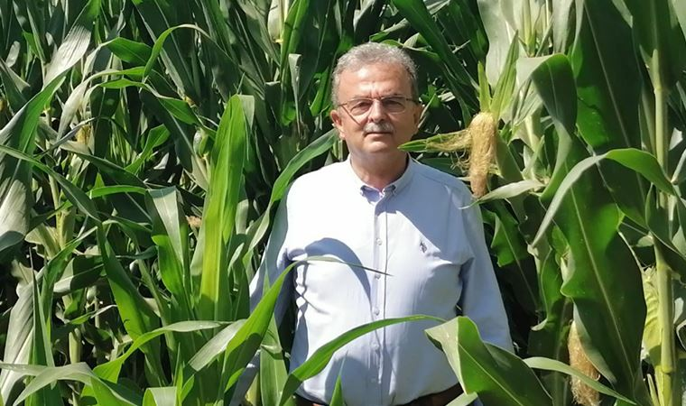 Muğla çiftçisinin çığlığı TBMM gündeminde: Destek ödemelerini yatırın