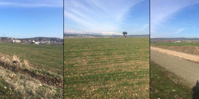 Maraş'ta Kürtlerin toprakları gasp ediliyor