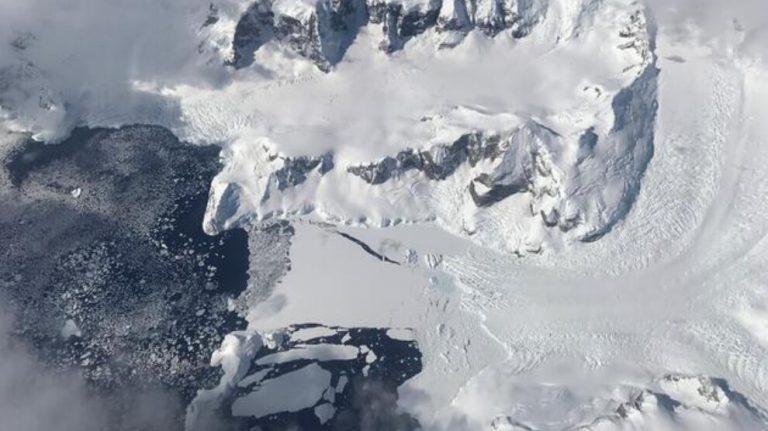 Kopan buzdağının altından oldukça çeşitli eko-sistem çıktı